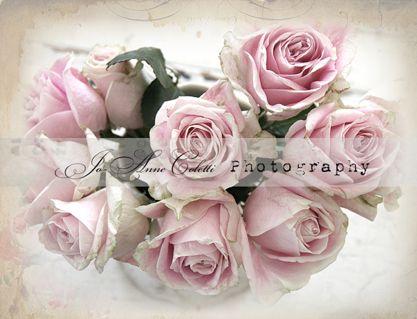 Summer's Bounty Note Cards-shabby chic note cards, romantic cards, vintage roses, Jo-Anne Coletti
