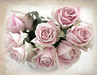 Summer's Bounty-shabby chic note cards, romantic cards, vintage roses, Jo-Anne Coletti