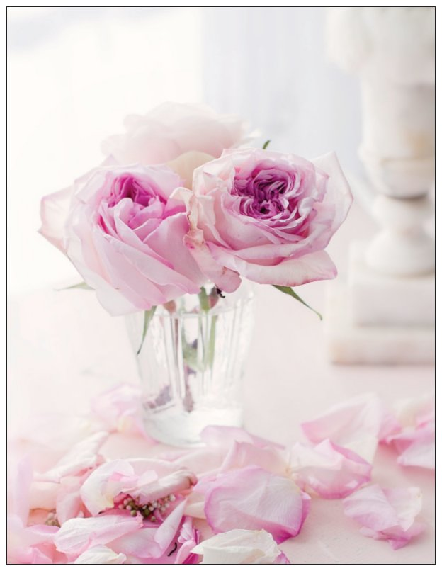 Rose Petals Note Cards
