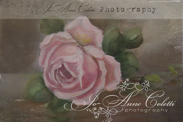 Antique Style Roses Note Cards