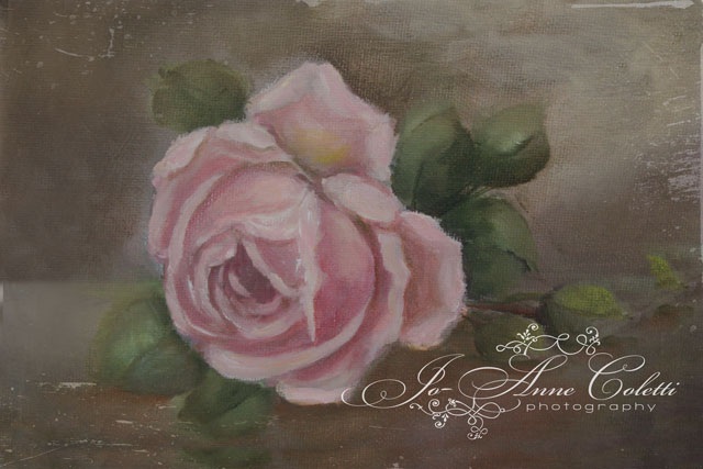 Vintage Rose Canvas Print-Rose painting, canvas prints, vintage roses, JoAnne Coletti