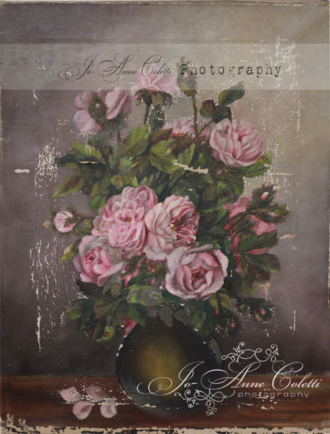 Antique Rose Canvas Print-old rose paintings, antique rose art, vintage rose paintings, JoAnne Coletti